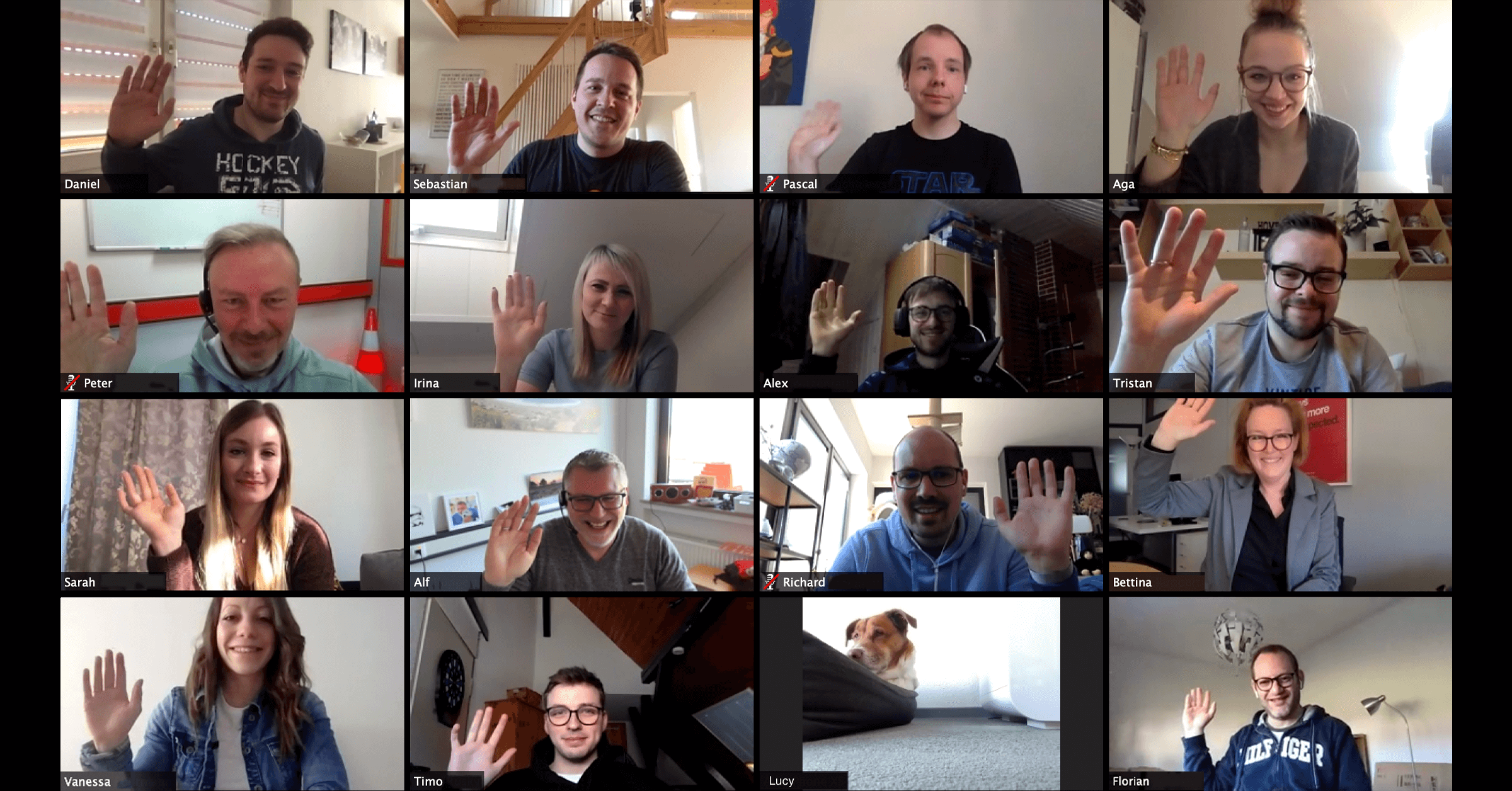 Our Series on Remote Working: Zoom Video Conferencing with Customers and Colleagues